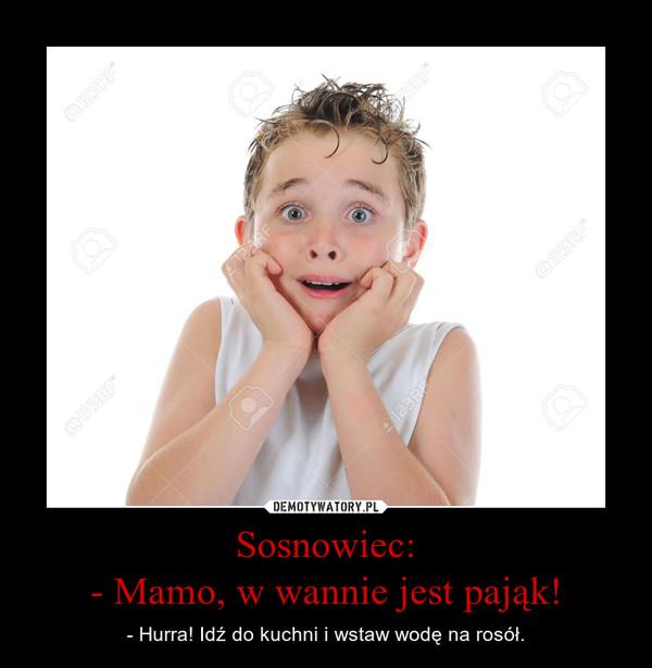 Sosnowiec:- Mamo, w wannie jest pająk! – - Hurra! Idź do kuchni i wstaw wodę na rosół.