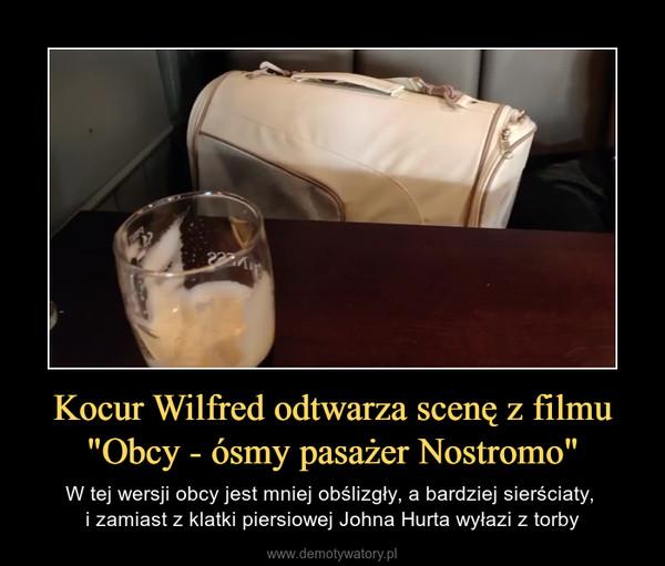 """Kocur Wilfred odtwarza scenę z filmu """"Obcy - ósmy pasażer Nostromo"""" – W tej wersji obcy jest mniej obślizgły, a bardziej sierściaty, i zamiast z klatki piersiowej Johna Hurta wyłazi z torby"""