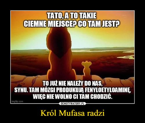 Król Mufasa radzi