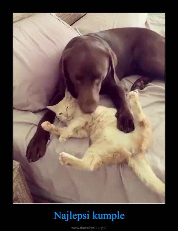 Najlepsi kumple –