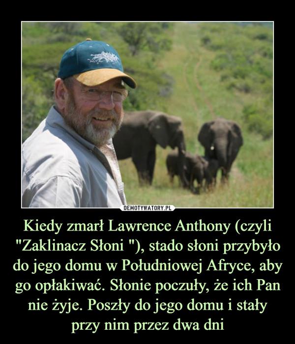 """Kiedy zmarł Lawrence Anthony (czyli """"Zaklinacz Słoni """"), stado słoni przybyło do jego domu w Południowej Afryce, aby go opłakiwać. Słonie poczuły, że ich Pan nie żyje. Poszły do jego domu i stały przy nim przez dwa dni –"""
