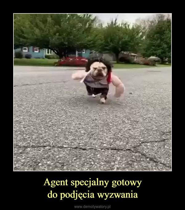 Agent specjalny gotowydo podjęcia wyzwania –