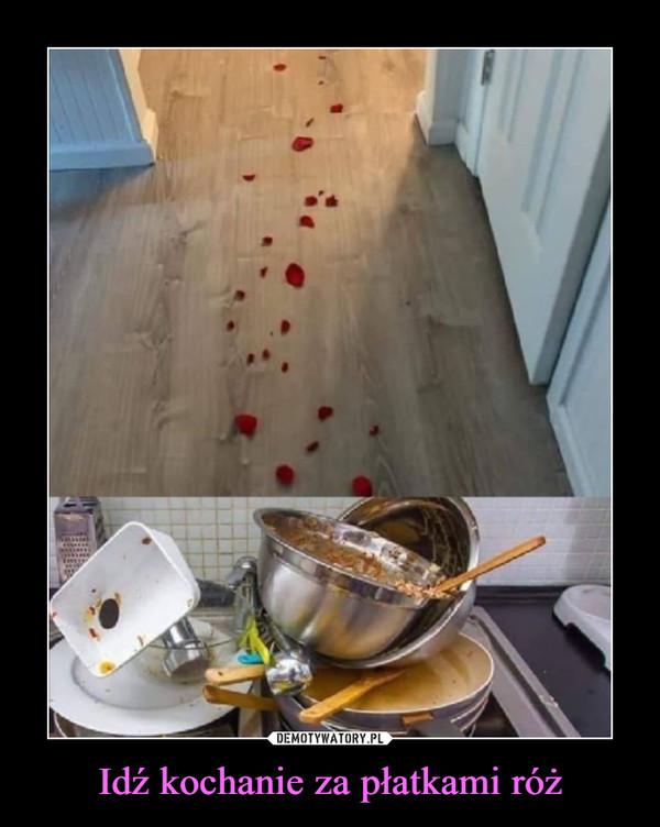 Idź kochanie za płatkami róż –