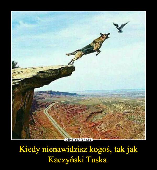 Kiedy nienawidzisz kogoś, tak jak Kaczyński Tuska. –
