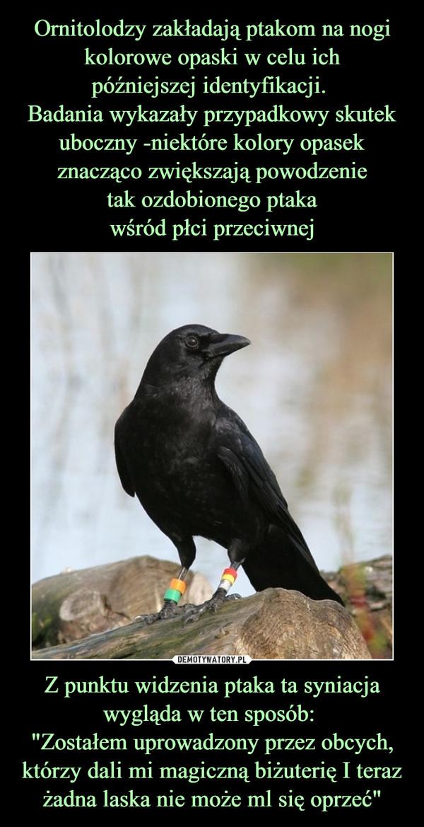 """Z punktu widzenia ptaka ta syniacja wygląda w ten sposób: """"Zostałem uprowadzony przez obcych, którzy dali mi magiczną biżuterię I teraz żadna laska nie może ml się oprzeć"""" –"""