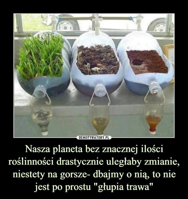 """Nasza planeta bez znacznej ilości roślinności drastycznie uległaby zmianie, niestety na gorsze- dbajmy o nią, to nie jest po prostu """"głupia trawa"""" –"""