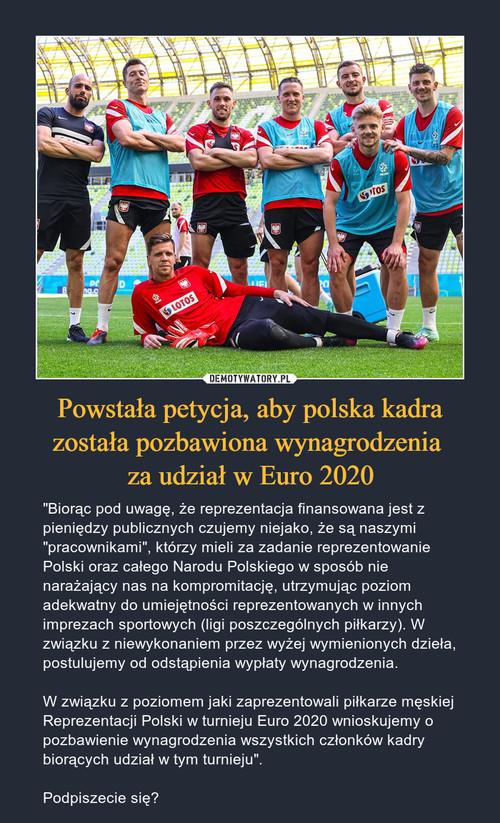 Powstała petycja, aby polska kadra została pozbawiona wynagrodzenia  za udział w Euro 2020