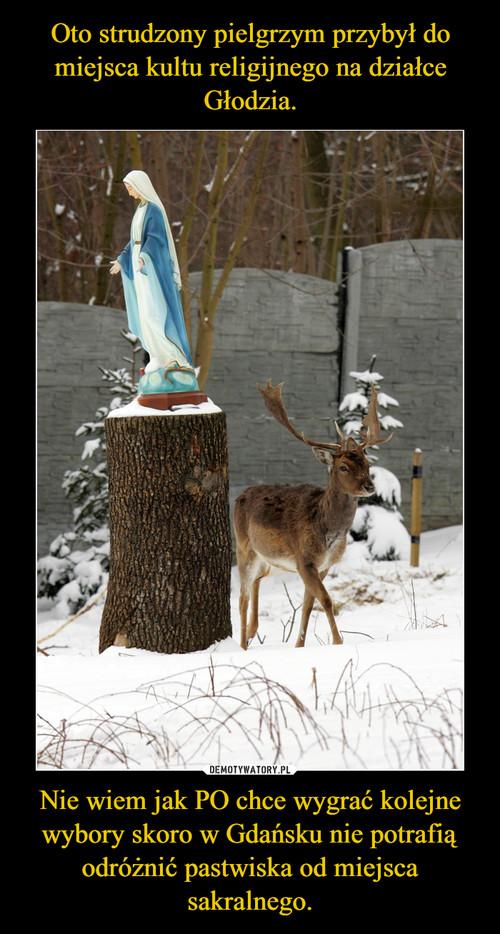 Oto strudzony pielgrzym przybył do miejsca kultu religijnego na działce Głodzia. Nie wiem jak PO chce wygrać kolejne wybory skoro w Gdańsku nie potrafią odróżnić pastwiska od miejsca sakralnego.