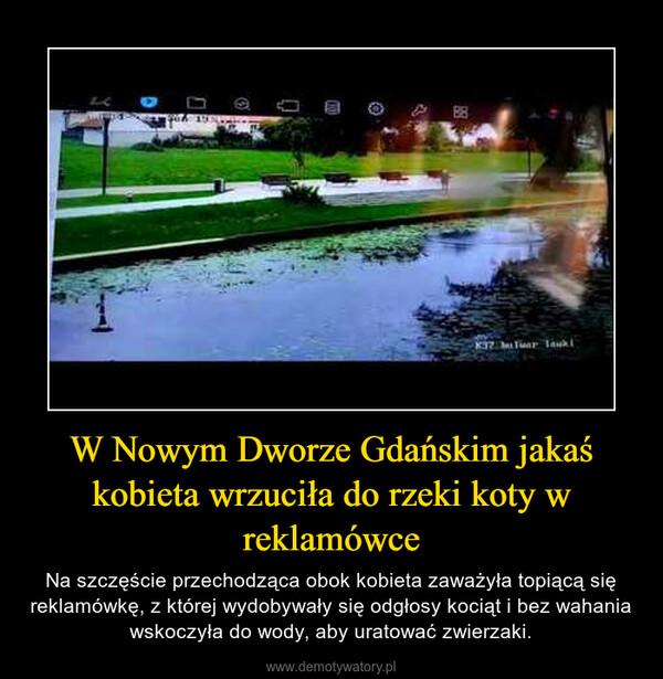 W Nowym Dworze Gdańskim jakaś kobieta wrzuciła do rzeki koty w reklamówce – Na szczęście przechodząca obok kobieta zaważyła topiącą się reklamówkę, z której wydobywały się odgłosy kociąt i bez wahania wskoczyła do wody, aby uratować zwierzaki.