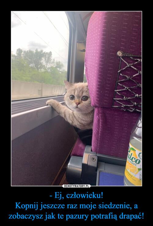 - Ej, człowieku! Kopnij jeszcze raz moje siedzenie, a zobaczysz jak te pazury potrafią drapać!
