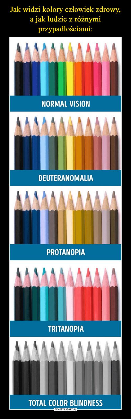 Jak widzi kolory człowiek zdrowy, a jak ludzie z różnymi przypadłościami:
