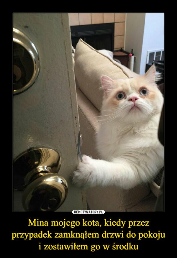 Mina mojego kota, kiedy przez przypadek zamknąłem drzwi do pokojui zostawiłem go w środku –