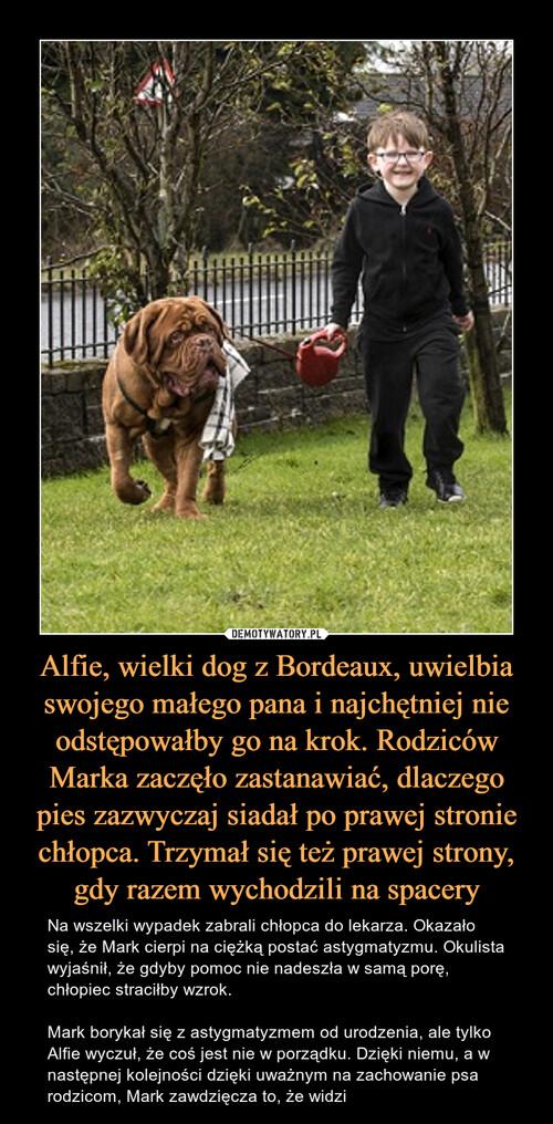 Alfie, wielki dog z Bordeaux, uwielbia swojego małego pana i najchętniej nie odstępowałby go na krok. Rodziców Marka zaczęło zastanawiać, dlaczego pies zazwyczaj siadał po prawej stronie chłopca. Trzymał się też prawej strony, gdy razem wychodzili na spacery
