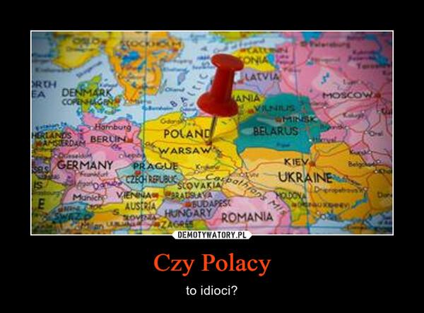Czy Polacy – to idioci?